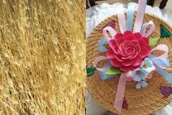 golden grass collage 2